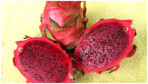Ripe Red Dragonfruit